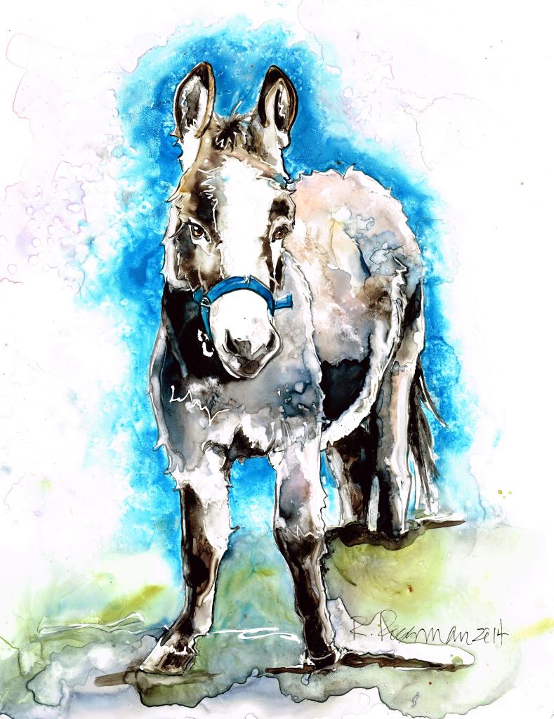 Mini Donkey 1 sm